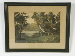 "Pair of bird prints attributed to Audubon – sight size 12 1/2"" x 17 ¾"""